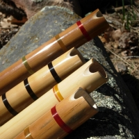 bamboo_kena_2