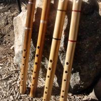 bamboo_kenacho_1